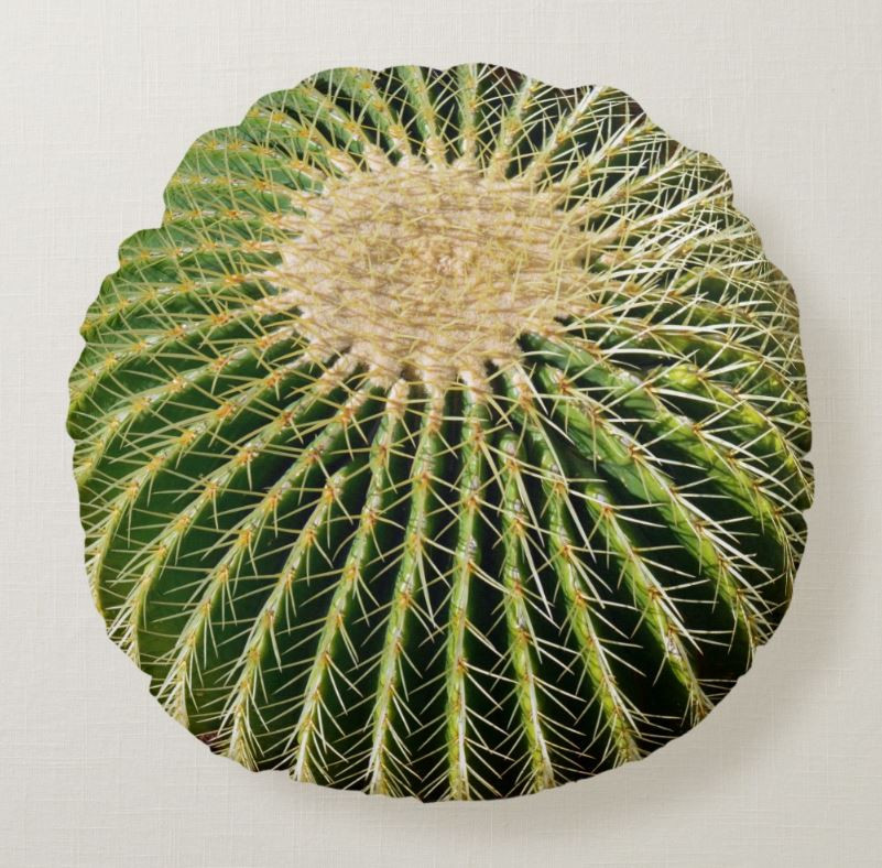Cactus Spikes Printed Round Throw Pillow
