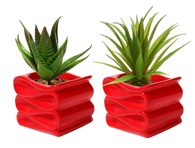 Modern Set Of Bright Ceramic Succulent Planters
