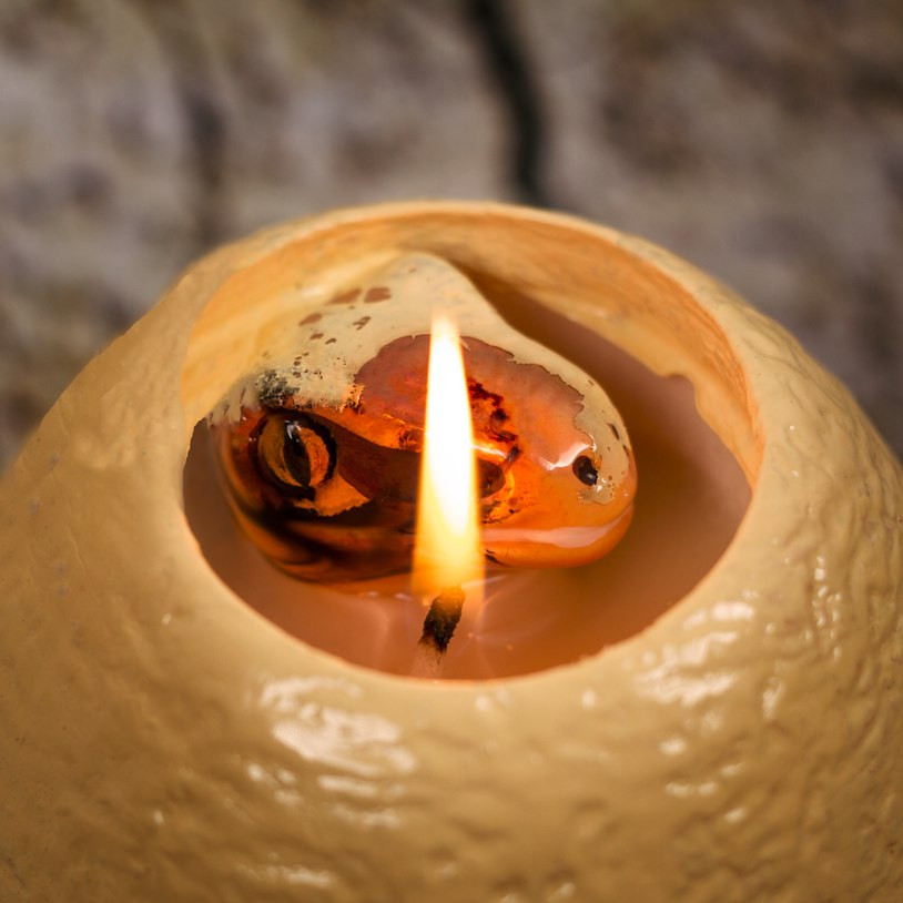 Very Cute Hatching Dinosaur Candle