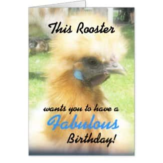 Funny Fabulous Rooster Birthday Card