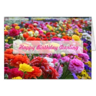 Happy Birthday Darling Rainbow Rannunculus Card
