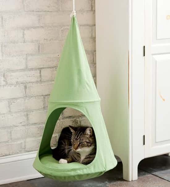20 awesome things for cool cats