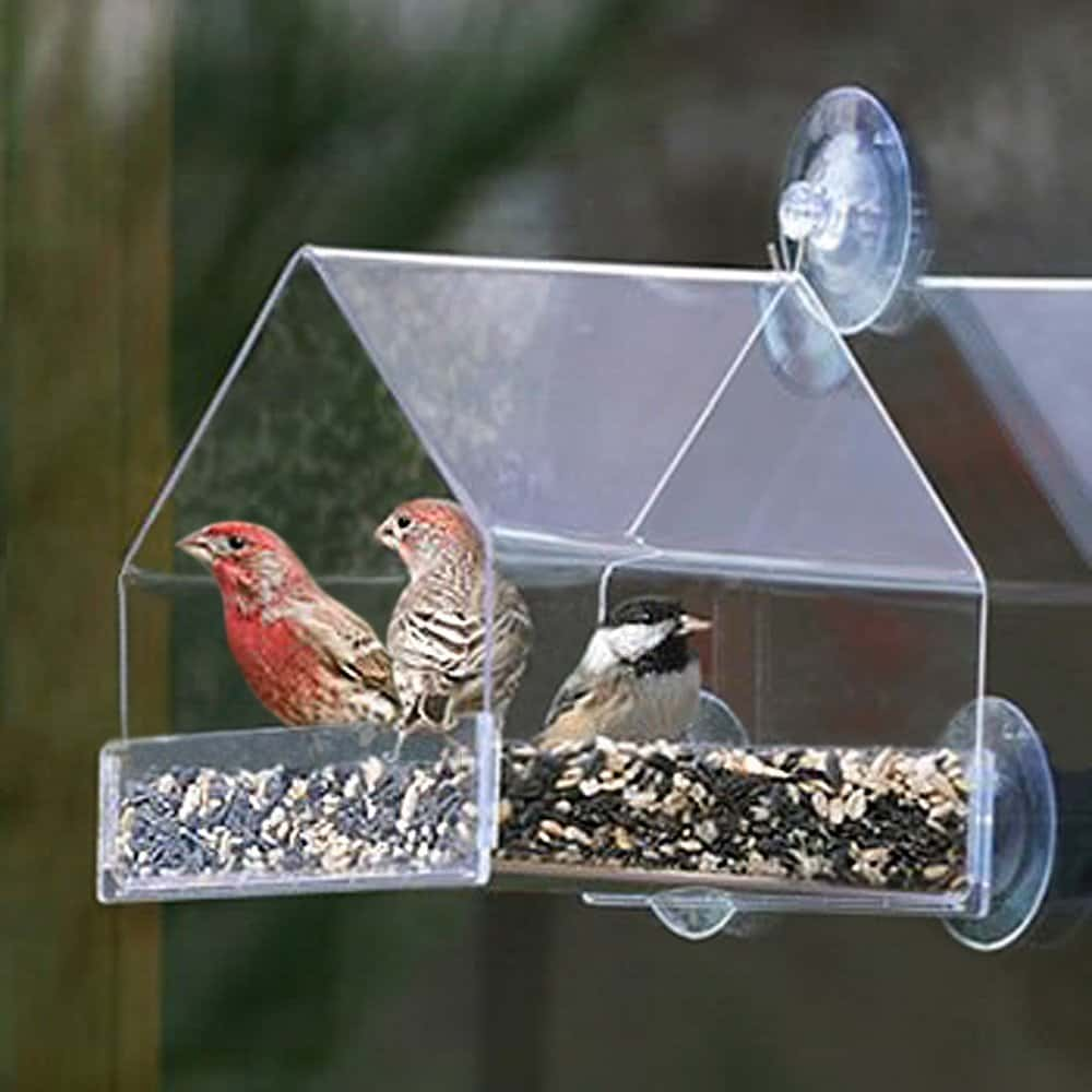 15 Cool Bird Houses