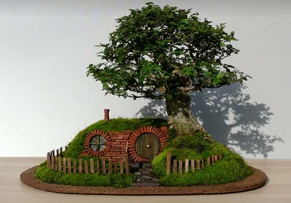 Adorable Bonsai Home
