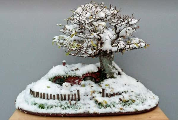 Miniature-Hobbit-Home-3