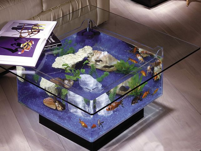 Aqua-Square-Coffee-Table-Aquarium