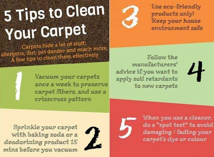 5 Useful Carpet Cleaning Tips