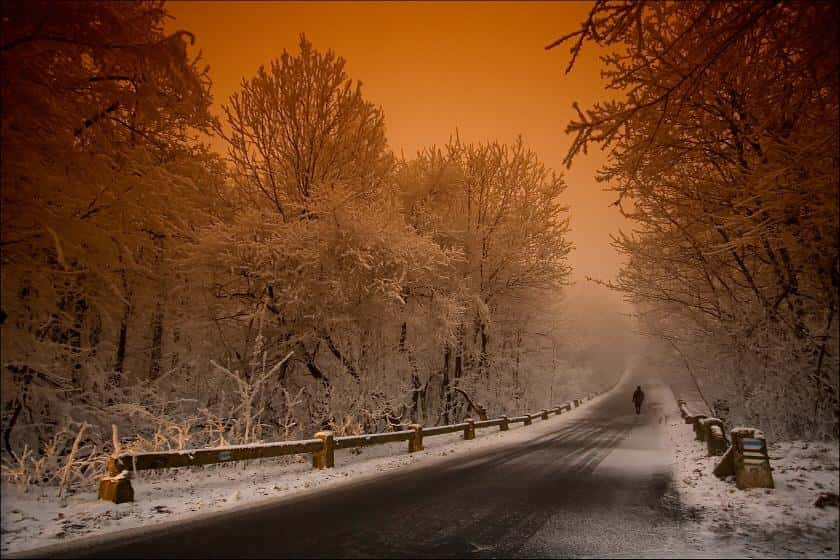 10 Amazing Winter Photographs
