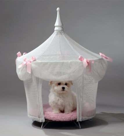 dog bed tent