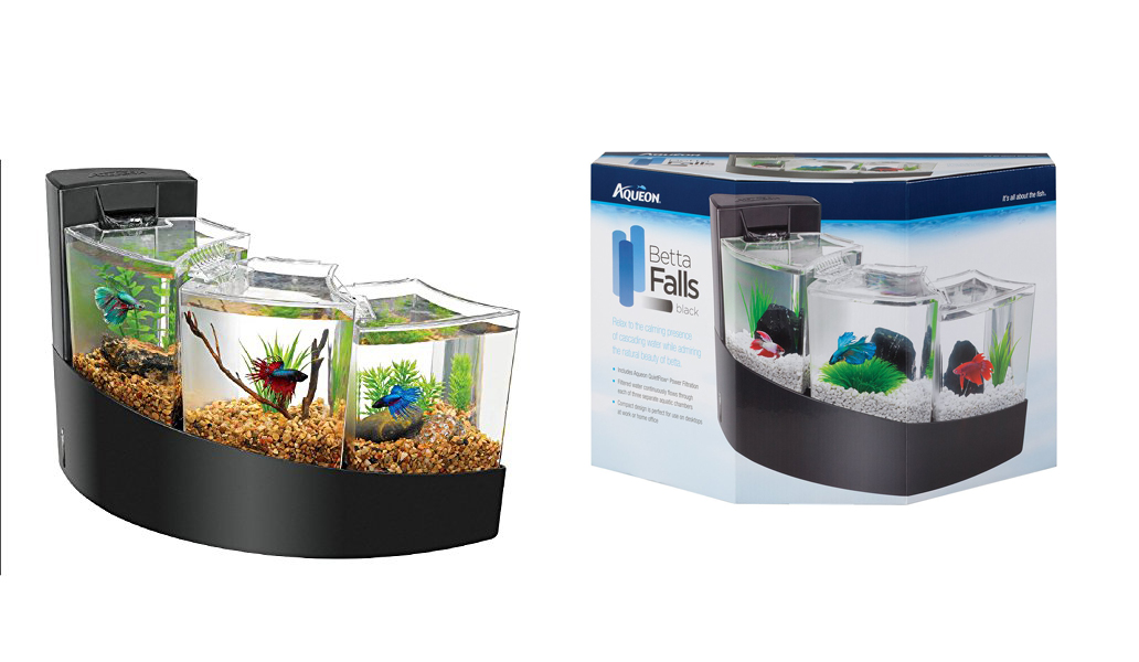 betta-fish-aquarium-setup