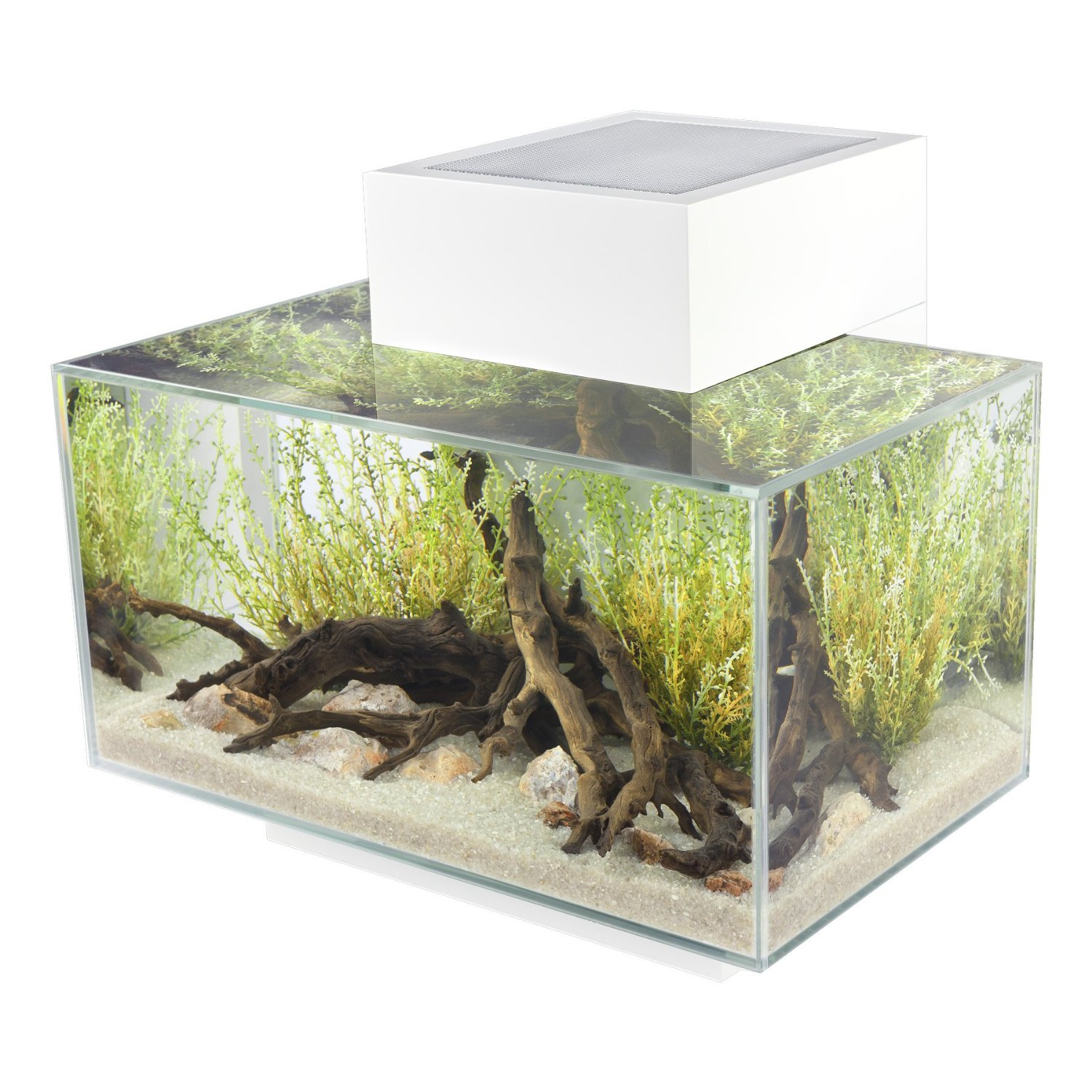 aquarium-with-built-in-light
