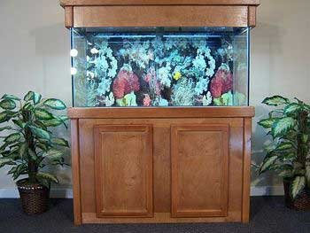 aquarium-with-cabinet
