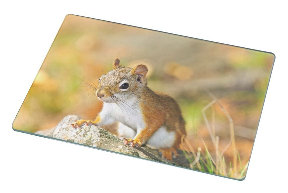 squirrel glass cutting board
