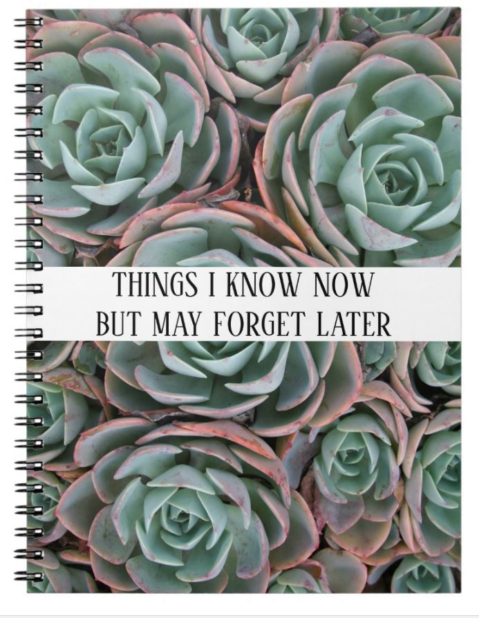 funny notebook gift