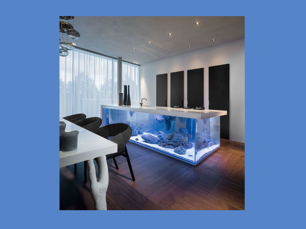 amazing ocean kitchen