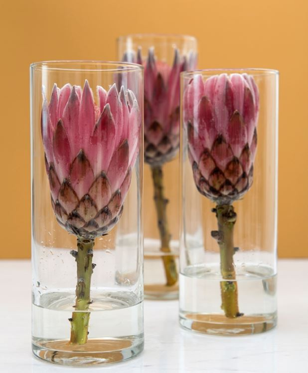 protea wedding ideas