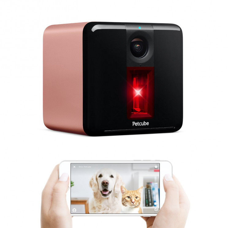 Smart Petcube Interactive Pet Camera With Laser Toy