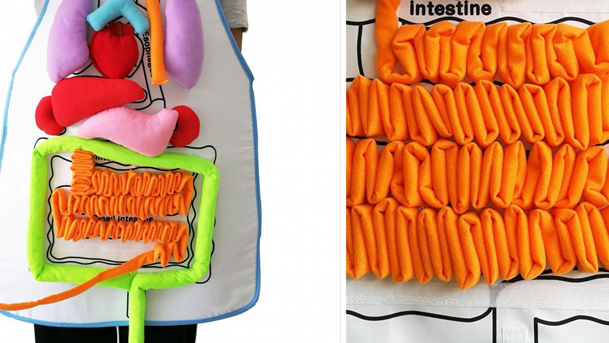 This Anatomy Apron Teaches Your Kids About the Organs and Makes a Great Costume