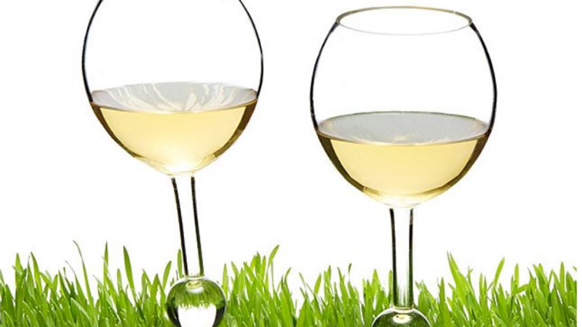 Durable Acrylic Outdoor Wine Glasses
