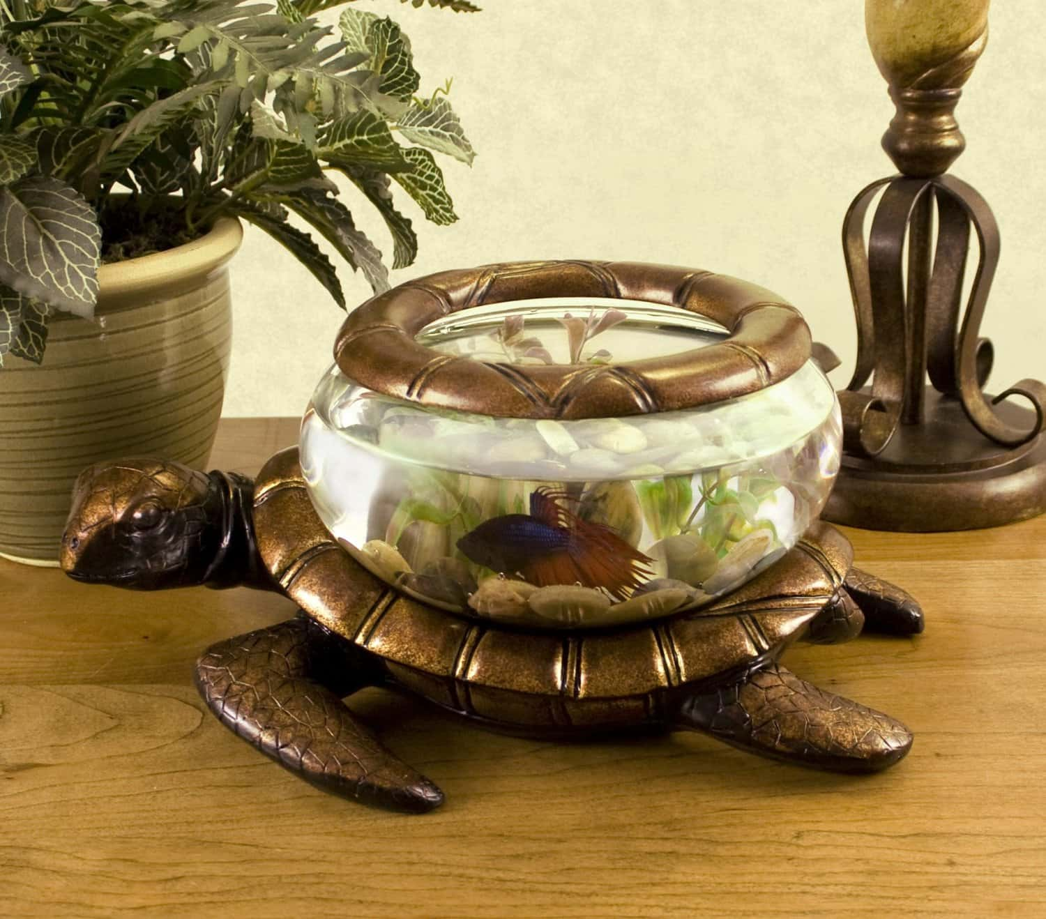 40 Cool Aquarium Ideas to Inspire You on Your Quest