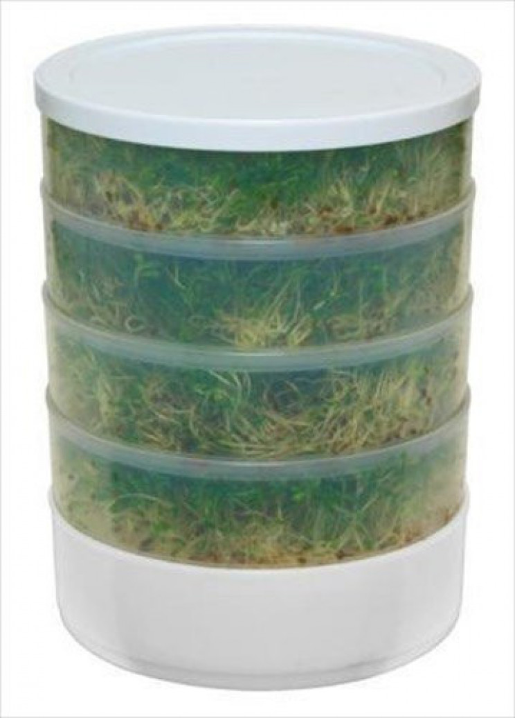 4-Tray Kitchen Seed Sprouter