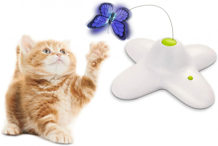 15+ Perfect Toys You Can Buy to Treat Your Cat
