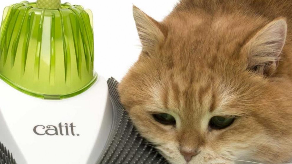 Catit, The Compact Wellness Center Specially Designed For Your Cat