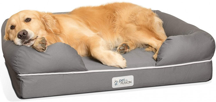 11 Cool Pet Accessories for Pet Lovers