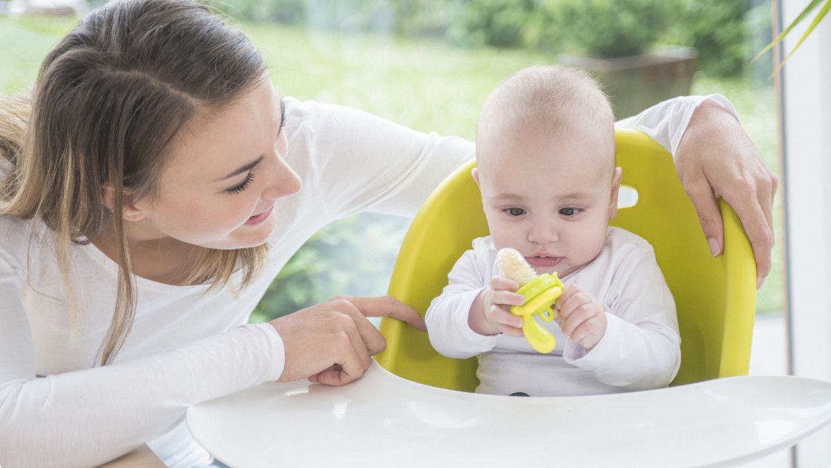 Your Baby is Going to Love Eating with This Baby Feeder