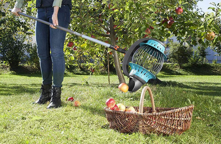 This Fruit Collector Helps You Pick Windfall Easier Than Ever Before