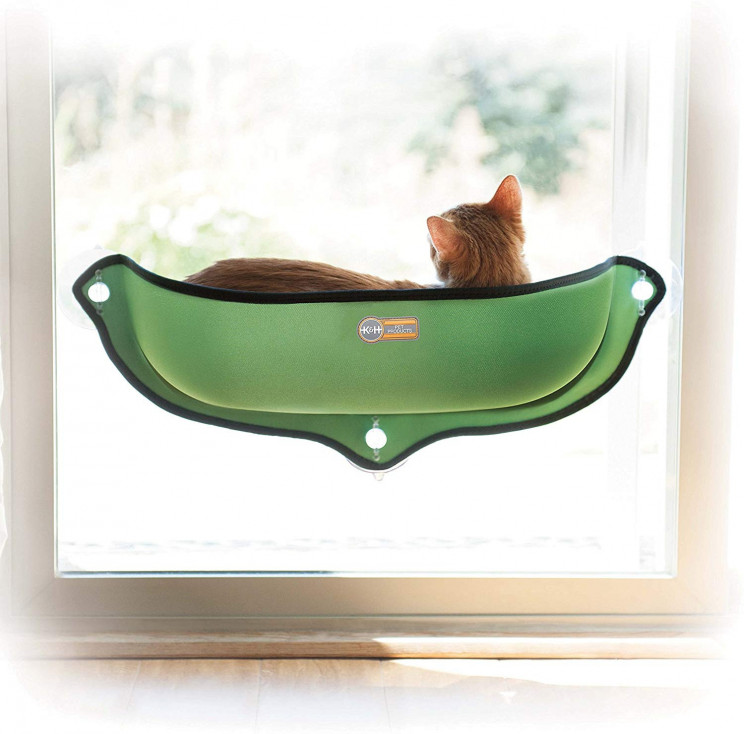 13 Awesome Must-Have Items For Cool Cats