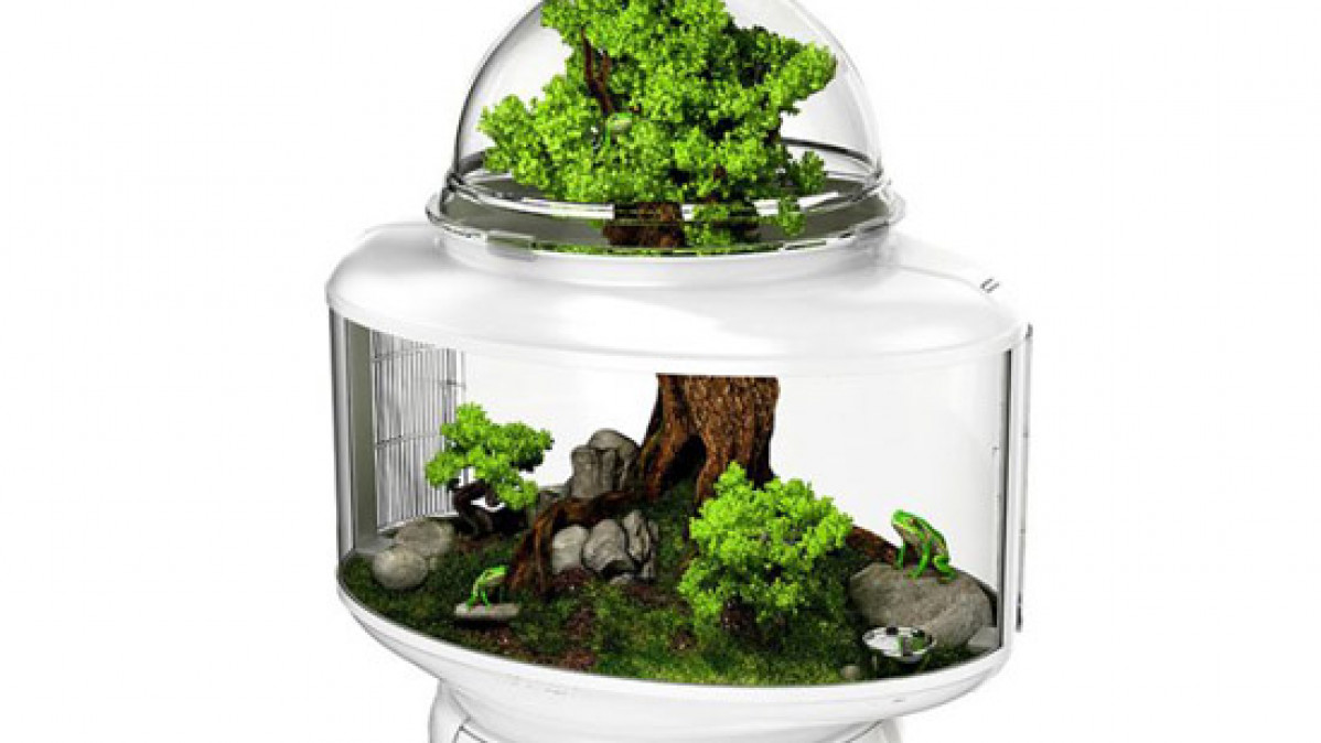 Bio Bubble Terrarium