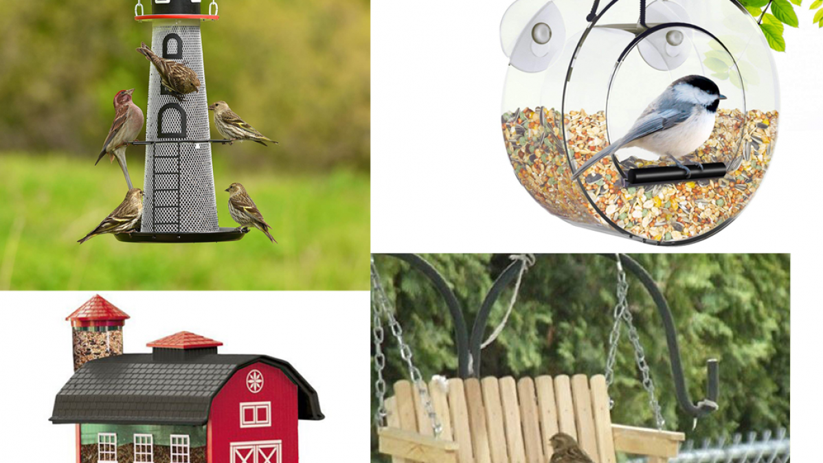 9 Cool Bird Feeders That Look Amazing