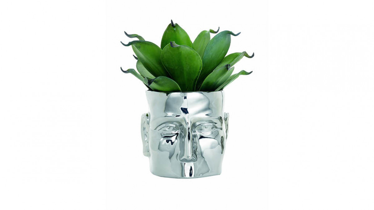 Silver Face Vase