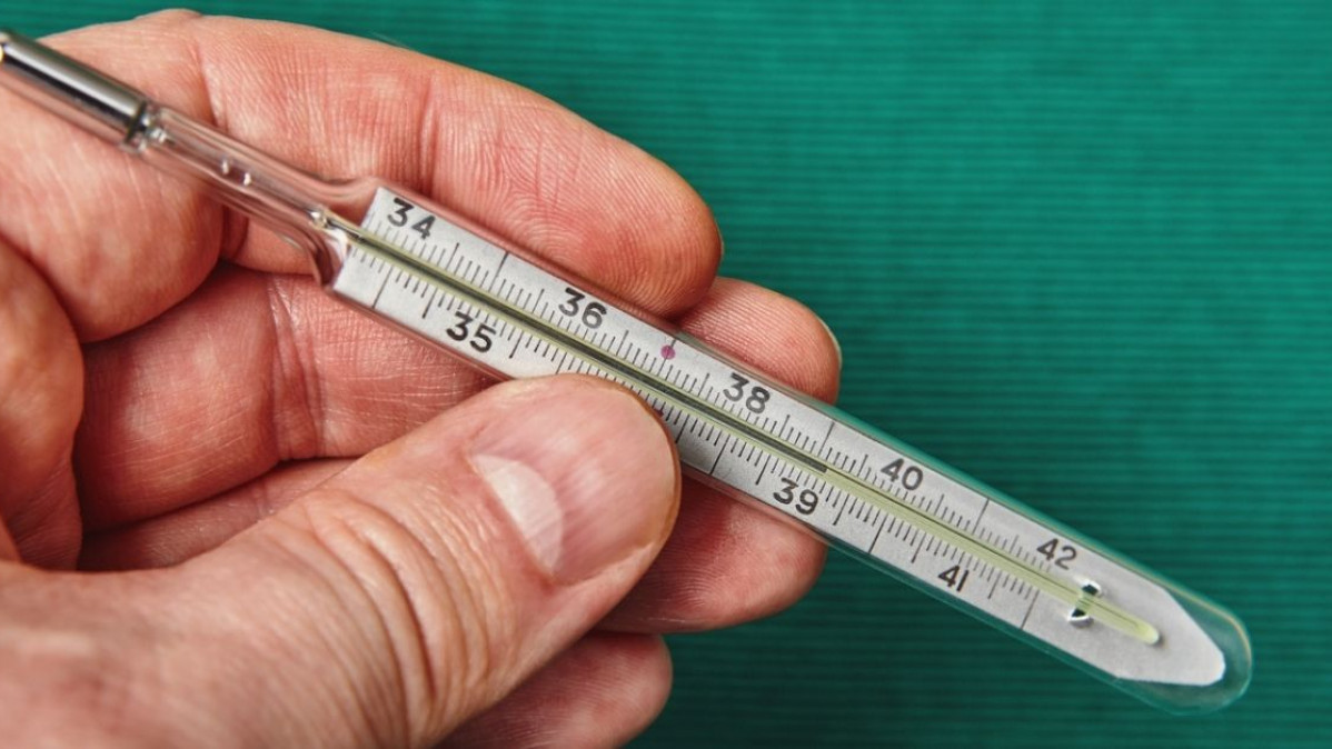 Vintage Look Tin Thermometers