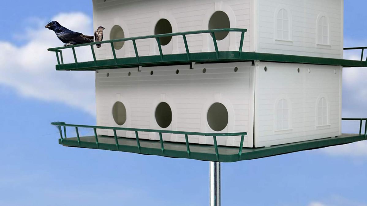 15 Cool Bird Houses