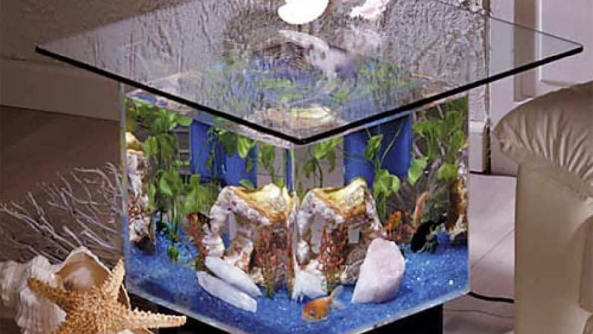 Tropical Aquarium Coffee Table